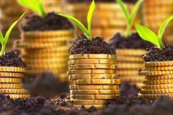 NEAȘTEPTAT: Fermierii bistrițeni primesc subvențiile din 5 decembrie