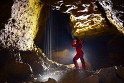 Se numără din nou liliecii în Peștera Izvorul Tăușoarei. Peștera e habitat de importanță europeană pentru lilieci