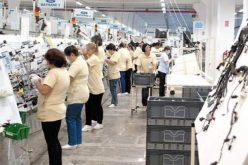 ÎNGRIJORĂTOR: Unul din patru angajați cu contract din Bistrița-Năsăud este muncitor necalificat. Vezi topul ocupațiilor din județ