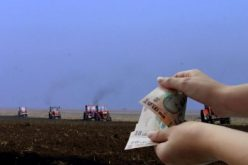 120 de agricultori din BN primesc zilnic banii de subvenții în cont. Fermierii mari nu intră încă în calcule