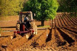 Noul ministrul al agriculturii vrea să modifice ordonanța plăților 3/2015. Bistrița Express a analizat ce se schimbă în textul legislativ adoptat acum un an