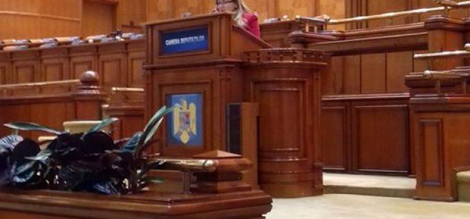 Cristina Iurișniți-prima declarație politică în Parlament. Tema: aprobarea referendumului