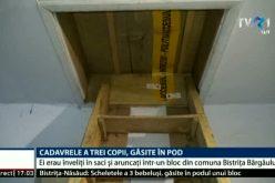 Avocatul Poporului se bagă în povestea cu cadavrele de bebeluși găsite în podul blocului din Bistrița-Bârgăului. Deocamdată face demersuri