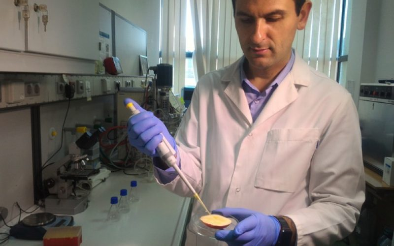 INEDIT: Omega 3 alimentar obținut din biodiesel ars. Cercetătorii de la Cluj au anunțat ieri descoperirea