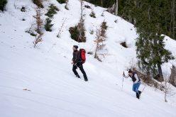 N-au pârtie pe credit, dar au ce n-are Bistrița: zăpadă și temperaturi ideale pentru schiat 6 ani la rând.