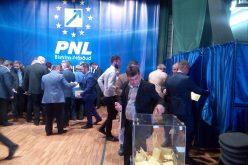Alegeri PNL: vicepreședinte pe justiție cea mai disputată dintre funcțiile de vice la PNL.