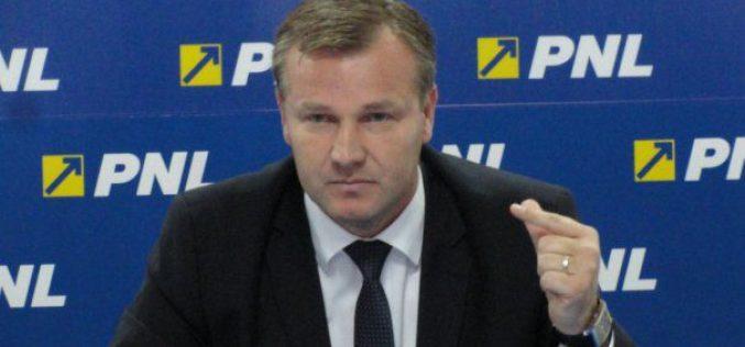 Stelian Dolha:  PSD-ul lasă impresia că vrea să se sinucidă pentru mofturile gurului din Teleorman