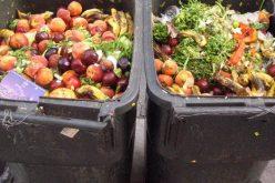 E liber din nou la risipa alimentară. Guvernul Tudose a blocat aplicarea legii în vigoare din 21 mai