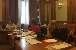 Deputatul Cristina Iurișniți vrea publicarea tezelor de doctorat într-un Registru unic.