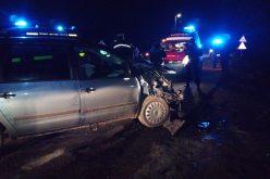Un student de 19 ani a murit într-un dramatic accident cu 10 victime (foto)