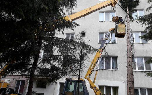 Vântul polar a doborât copaci în Bistrița și a lăsat mii de abonați fără electricitate între Năsăud și Salva