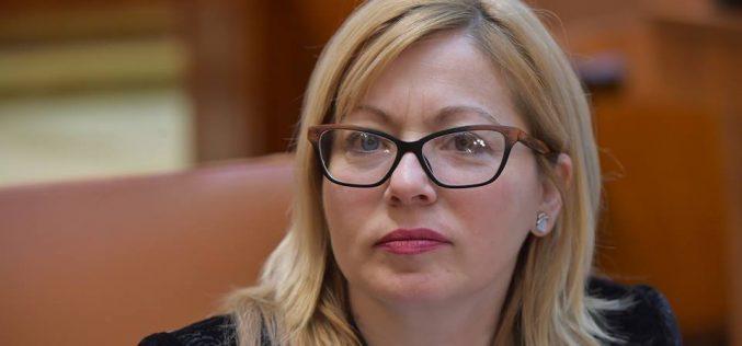 """Deputatul Cristina Iurișniți către deputatul Daniel Suciu:"""" hoții strigă hoții!"""""""
