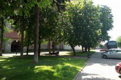 Petiția online împotriva mutilării zonelor verzi din Piața Centrală a Bistriței a depășit 2000 de semnaturi