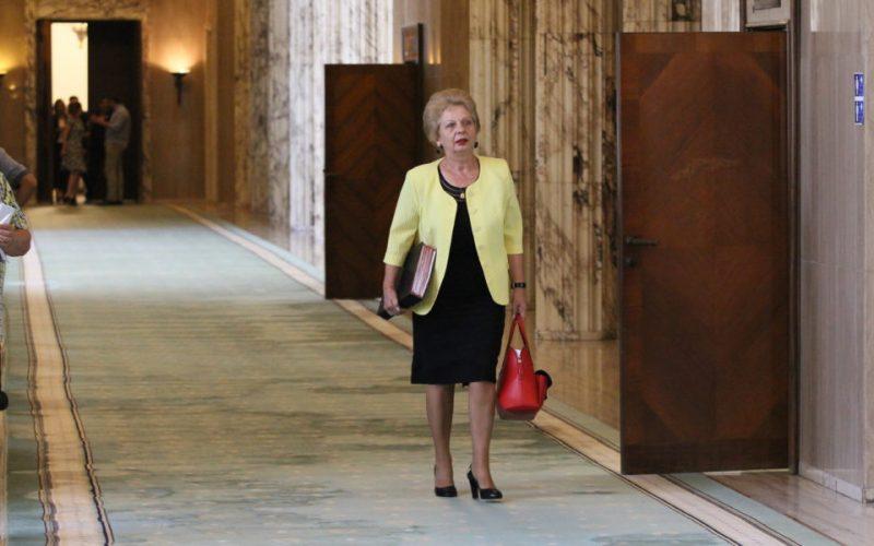 """Pană versus Deneș : """"Probabil că sună a aberație: vorbim de un fost ministru PSD și împotrivă, un ministru PSD. Eu nu sunt împotriva domnului ministru"""""""