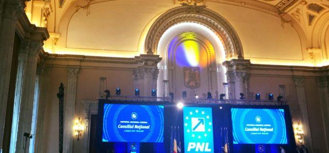 Președinta femeilor liberale explică de ce a adoptat PNL standardele bunei guvernări