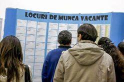 RECRUTĂRI: Ce job-uri la stat sunt scoase la concurs săptămâna aceasta în Bistrița-Năsăud?